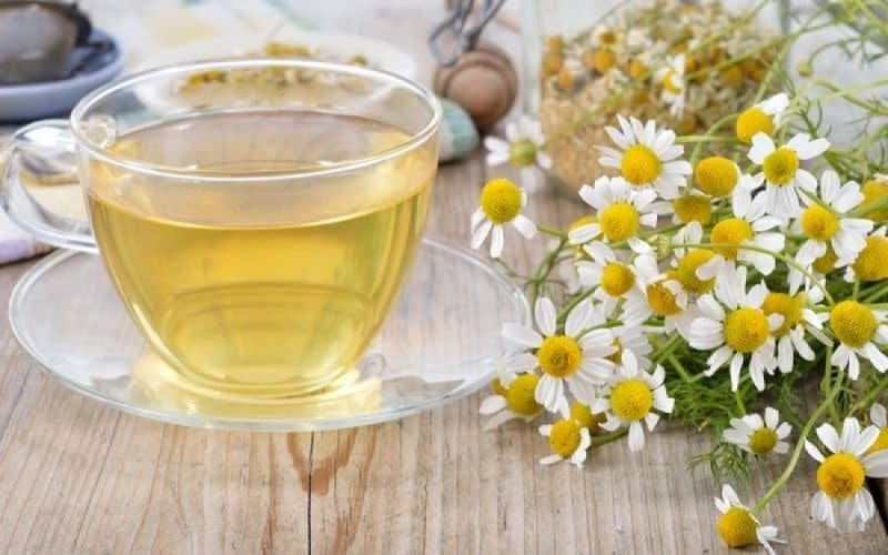 Discover 5 Types Of Natural Herbs For Tea That Can Help People Sleep Better